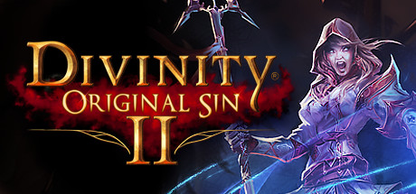zDivinity: Original Sin 2 (Steam / RU)