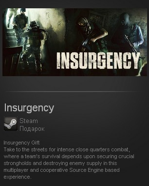 Insurgency (Steam Gift/Region Free) + подарок