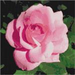"""В архиве находится схема для вышивки крестом """"Роза"""".  Содержит следующие файлы:1. Черно-белую схему..."""