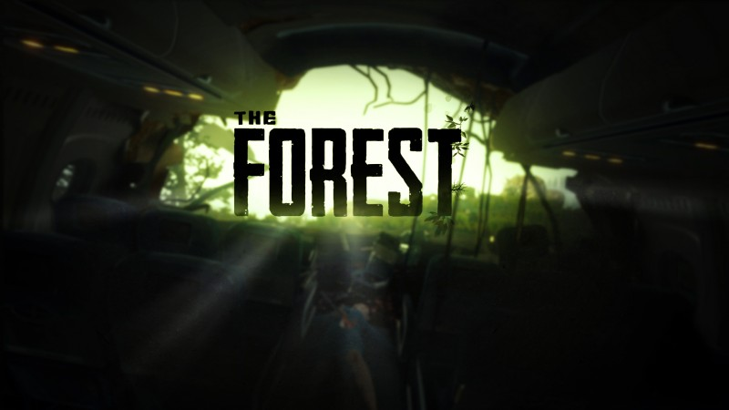 The Forest (RU/CIS activation; Steam gift)