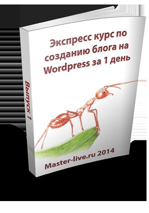 Экспресс курс по созданию блога WordPress за 1 день