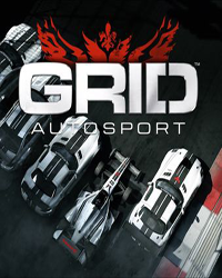 GRID AUTOSPORT BLACK EDITION RU-CIS STEAM