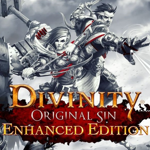 Divinity: Original Sin Enhanced Edition Gift (RU\CIS)