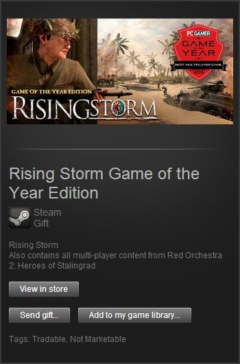 Rising Storm Game of the Year (Steam Gift /Region Free)