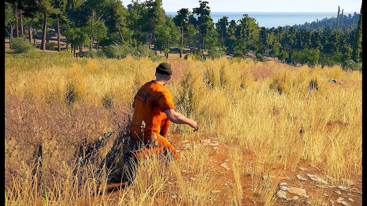 SCUM (Steam Gift,RU)