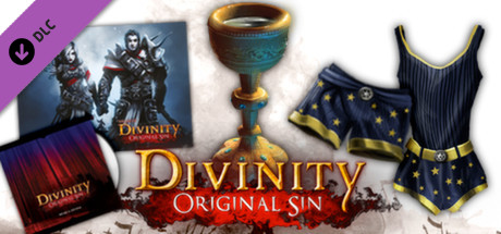Divinity: Original Sin - Source Hunter DLC pack (Steam)