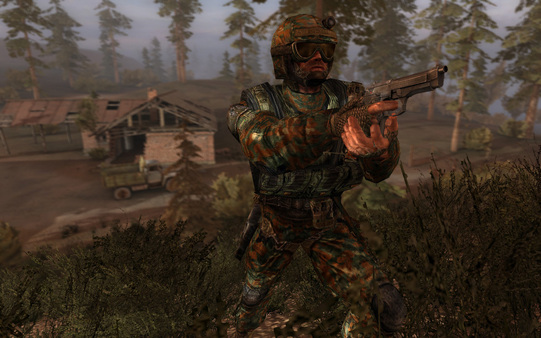 STALKER: Call of Pripyat (ROW) Steam Key - region Free