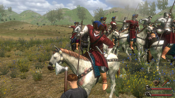 zzzz_Mount & Blade With Fire & Sword STEAM Key - ROW