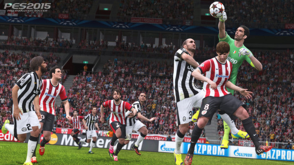 zzzz_Pro Evolution Soccer (PES) 2015 - STEAM