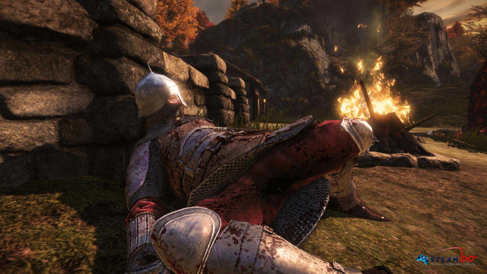 Chivalry: Medieval Warfare RU/CIS (Steam Gift/Key)