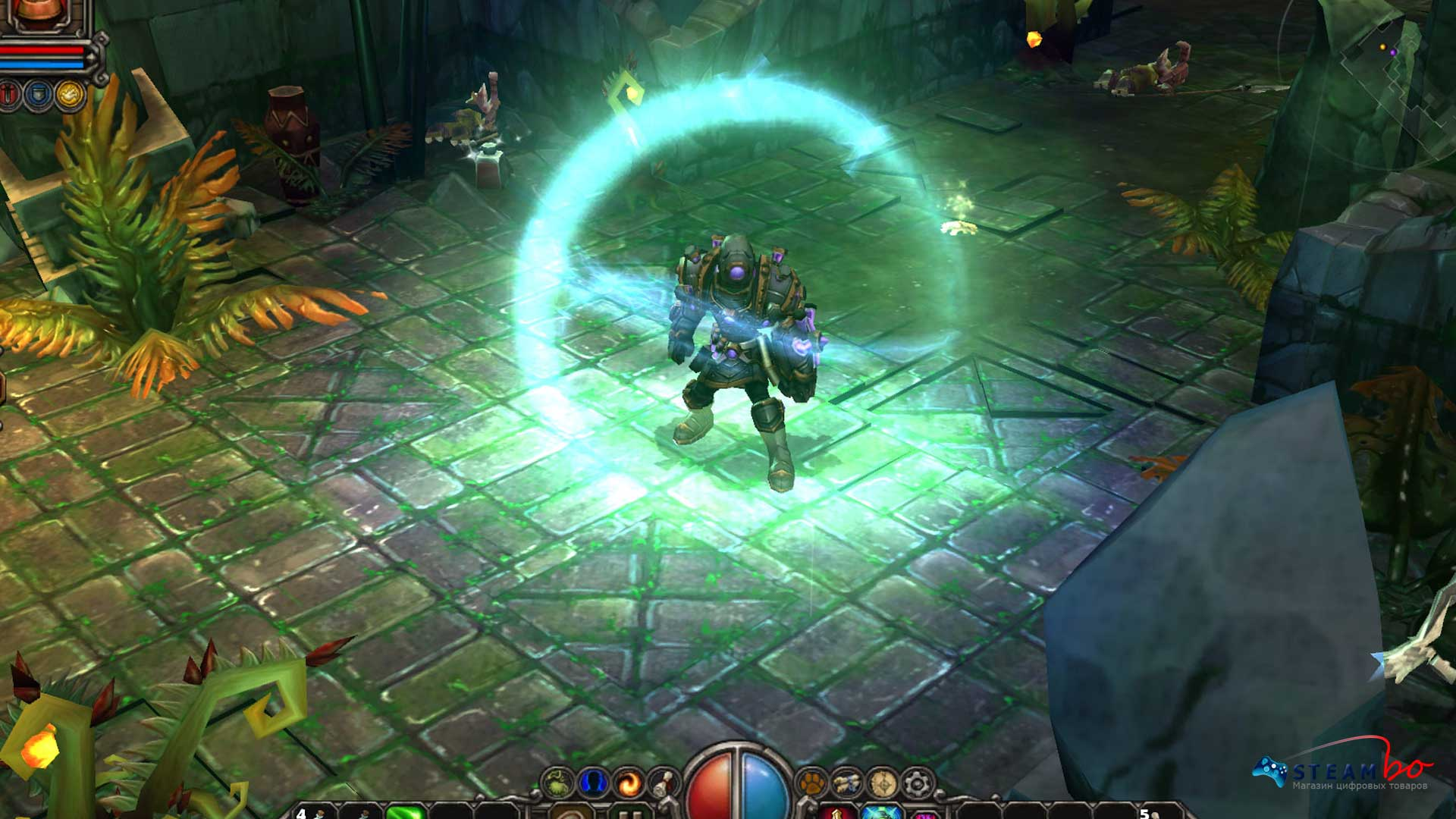 Torchlight  Region Free (Steam Gift/Key)