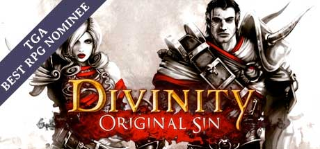 Divinity: Original Sin Region Free (Steam Gift/Key)