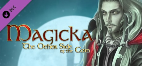Magicka: The Other Side of the Coin  (Steam Gift / ROW)