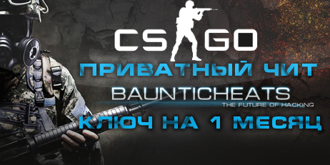 STEELHOOK для Counter-Strike: Global Offensive/1 месяц