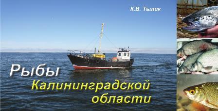 Рыбы Калининградской области