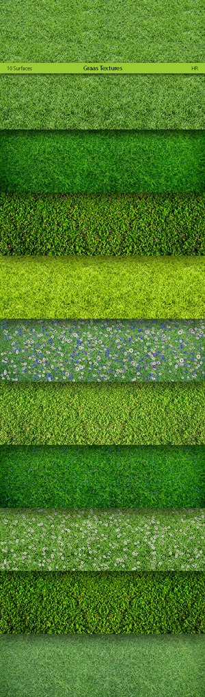 Grass Surfaces Texture