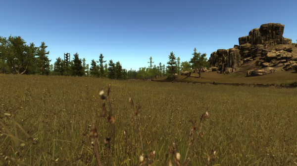 Rust (Steam Gift \ Region RU+CIS)