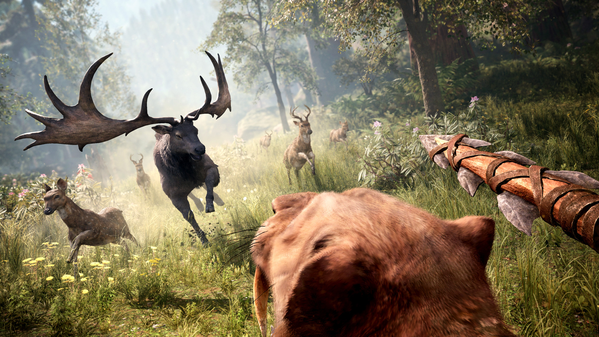 Far Cry Primal Standard Edition ( Steam Gift Ru / Снг )
