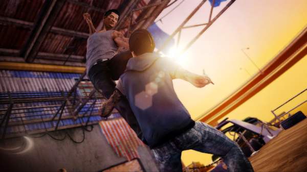 Sleeping Dogs Collection ( Steam Row )