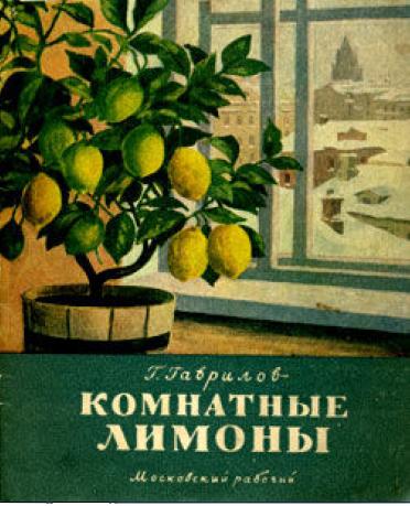 Гаврилов Г.С. Комнатные лимоны 1955 г.
