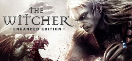 The Witcher: Enhanced Edition (Region Free/Steam Gift)
