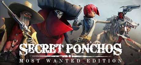 Secret Ponchos (Steam Key, Region Free)