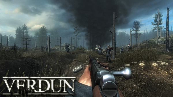 Verdun (Steam Gift, Region Free)