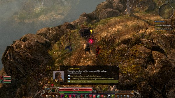 Grim Dawn (Steam Gift, Region RU+CIS)