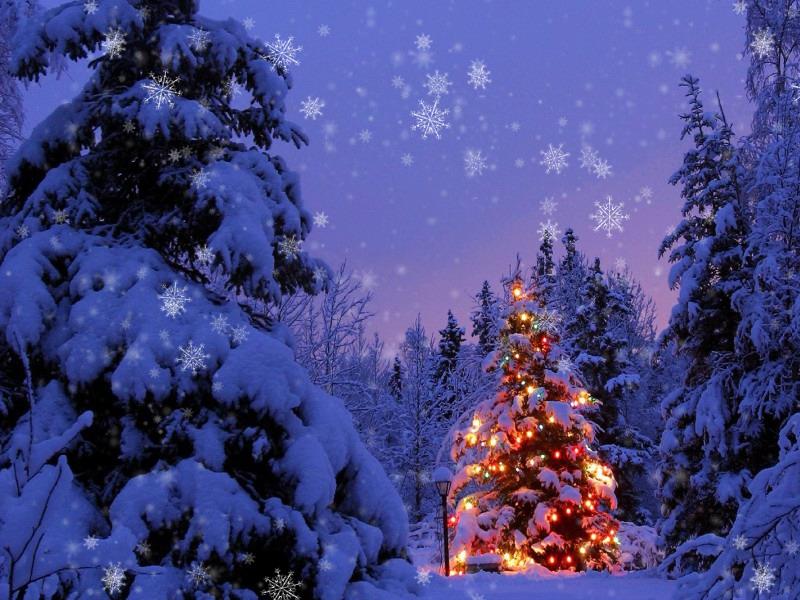 Новогодние скрипты падающего снега и снежинок на сайт ...: http://3psn.ru/2221551-novogodnie-skriptyi-padayuschego-snega-i-snejinok-na-sayt/