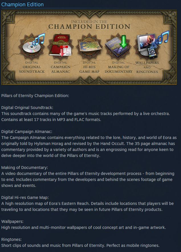 Pillars of Eternity Champion Ed. Steam Key Region Free