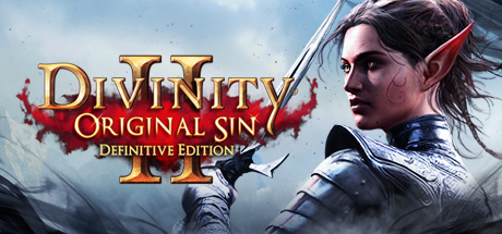 DIVINITY: ORIGINAL SIN 2 DEFINITIVE ED (STEAM RUSSIA)
