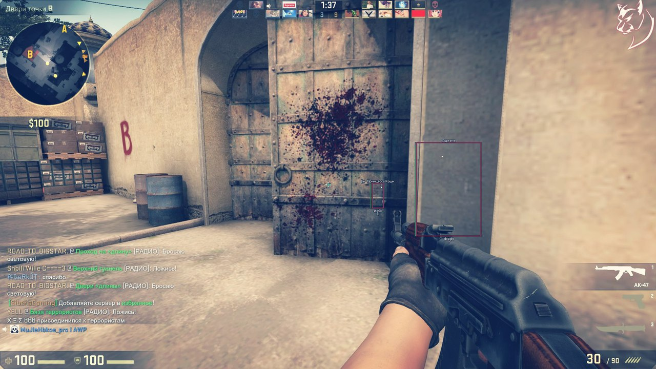 Procheat chit dlya cs go 5 dаy