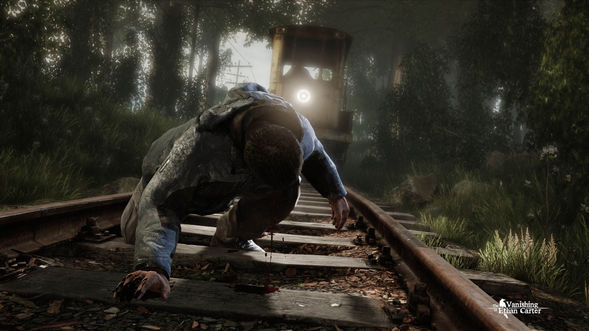 The Vanishing of Ethan Carter (STEAM KEY / region free)