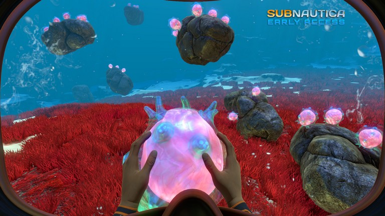 zSubnautica (Steam Gift/RU CIS) + подарок