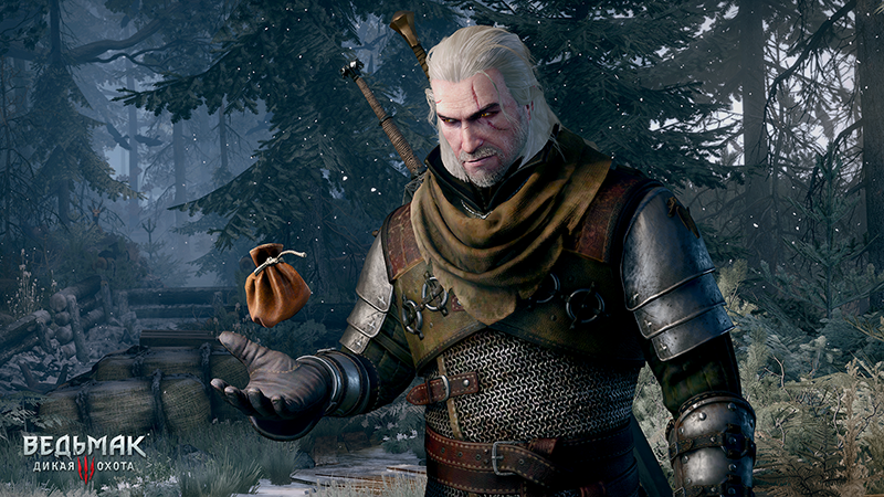 The Witcher 3: Wild Hunt: DLC Stone Heart (GOG KEY)