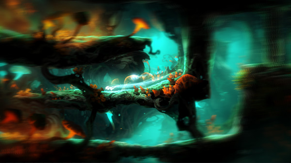 Ori and the Blind Forest:Definitive Edition Gift/RU+CIS