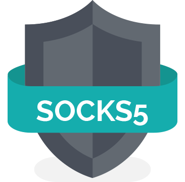 Anonymous Fast proxy HTTP / SOCKS 1 month