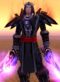 Tabard of the Void (Tabard of Void)