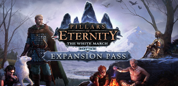 Pillars of Eternity: Expansion Pass (Steam KEY)