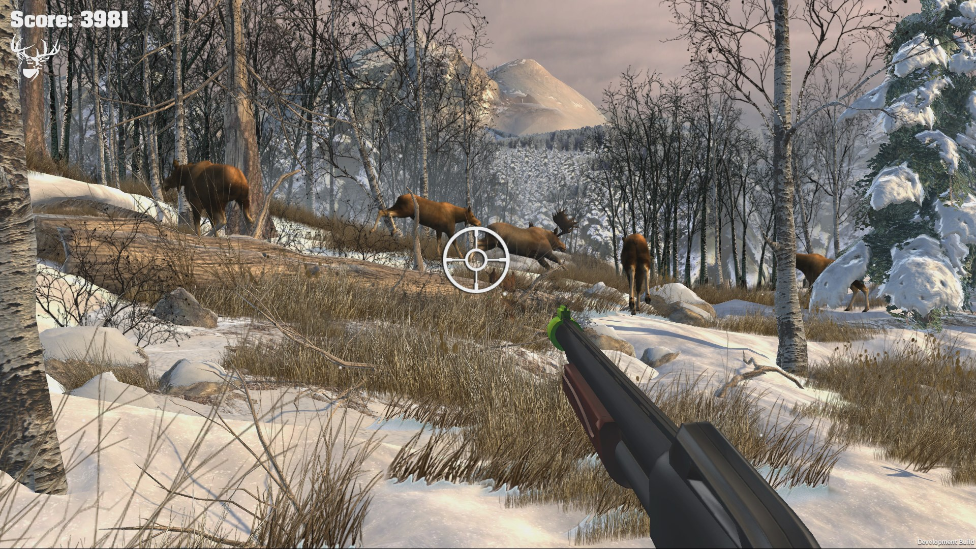 Big Buck Hunter Arcade (Steam key) -- RU