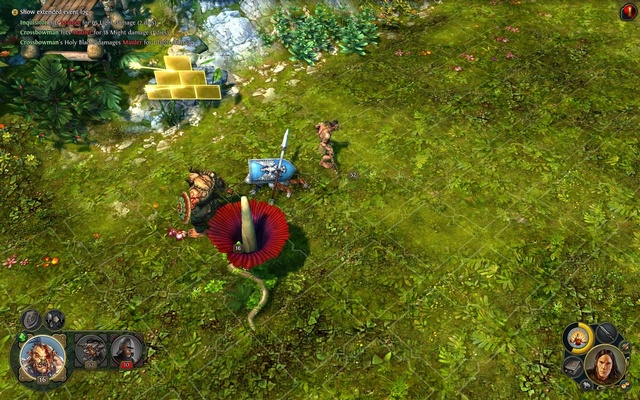 Might & Magic ® Heroes ® VI  (Steam Аккаунт)