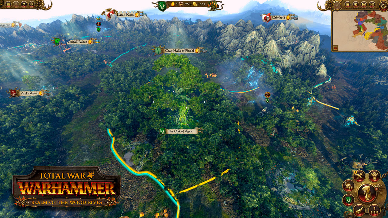 DLC-Realm of the Wood Elves(Steam KEY/RU&CIS)