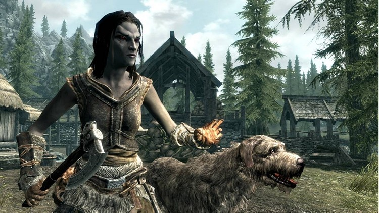 The Elder Scrolls V: Skyrim + GIFT
