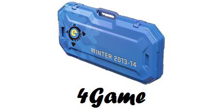 Купить Зимний кейс eSports 2013 (Случайное оружие) + БОНУС