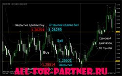 Video Course - Forex trading. Path trader.