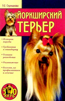 Book Yorkshire Terrier