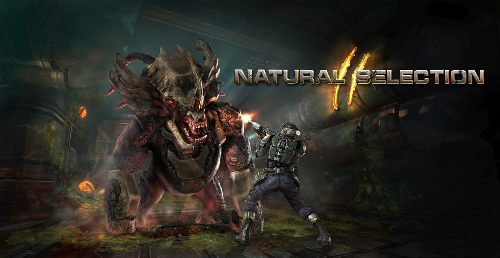 Natural Selection 2 (Steam Gift / Region FREE) - СКИДКИ