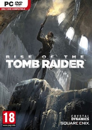 Rise of the Tomb Raider (Steam KEY) + GIFT