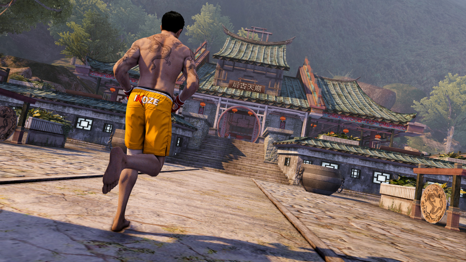 Sleeping Dogs Definitive Edition (RU/CIS steam gift)