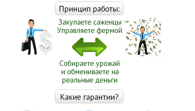 The script of the economic game with the withdrawal of funds